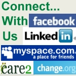 Connect With us on our social network pages